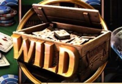 Slots Wild Example