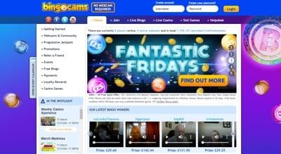 Bingocams Screenshot