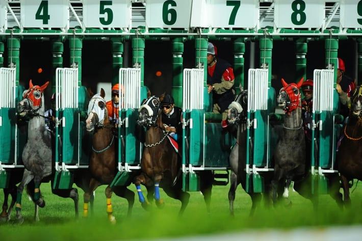 Jockeys at the starting posts