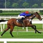 Horse racing general