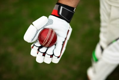 Cricket ball glove