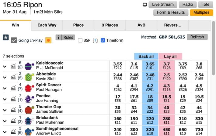 Betfair's Betting Exchange