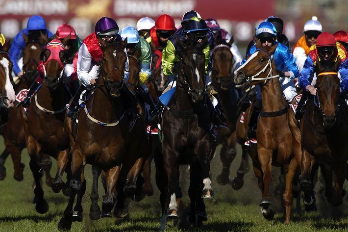 Large horse race