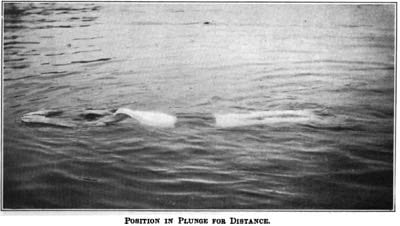 Plunge for Distance